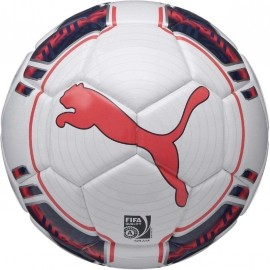Puma EVOPOWER 1 FUTSAL - Piłka nożna