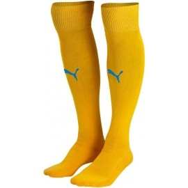 Puma TEAM SOCKS