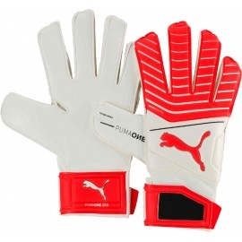 Puma ONE GRIP 17.3 RC
